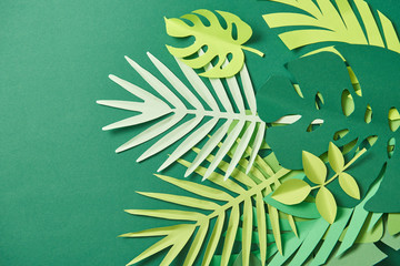 top view of tropical paper cut palm leaves on green background with copy space Wall mural