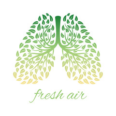 Lungs with foliage. Healthy human lungs with leaves vector concept