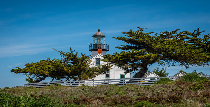 Point Pinos Historic Lighthouse along the Monterey Bay in Pacific Grove, California, near Asilomar beach, with Monterey Cypress trees (Cupressus macrocarpa) in the foreground.