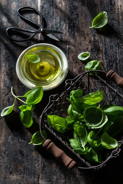 Fresh Basil with Olive Oil