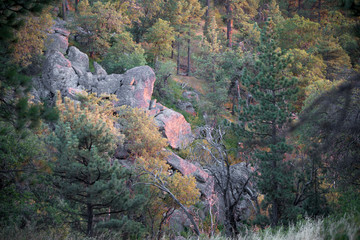 Sunset casts striking colors on Granite rocks along the trail in the Laguna Mountains in San Diego, California
