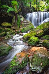 Fototapeta Cascading waterfall through lush rainforest obraz