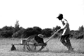 Lawn mower worker man cutting grass, Worker cutting grass with grass cutter machine, Cutting grass in the park