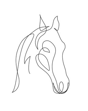Head horse continuous line drawing art. Editable line. Vector logo, icon, flyer