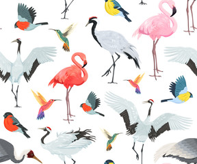 Canvas Prints Flamingo Seamless pattern with birds. Flamingos, cranes, hummingbirds, chickadees and bullfinches