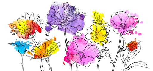 vector drawing flowers Wall mural