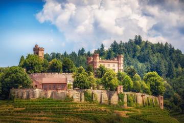 Aussicht auf Schloss Ortenberg in Baden im Kinzigtal