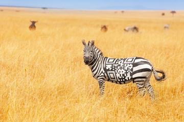 Photo sur Plexiglas Zebra Zebra with QR code on the back concept in field