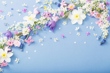 spring flowers on paper background