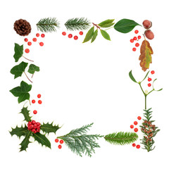 Winter and flora and fauna with loose red holly berries forming a square background border on white.  Traditional natural symbols for the winter season.