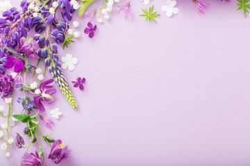 Foto auf Leinwand Blumen purple, blue, pink flowers on paper background