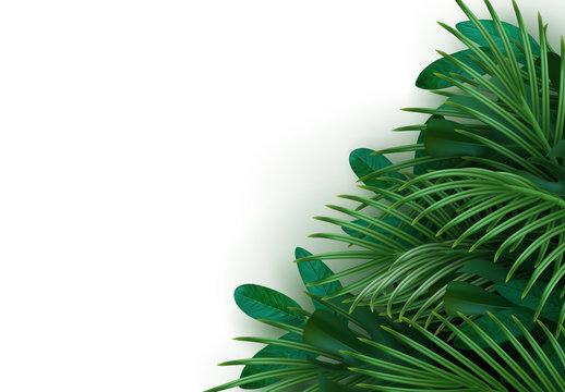Branch palm realistic