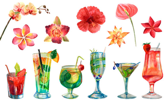 Watercolor set of cocktails and flowers isolated on a white background