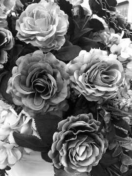 Fake rose flower black and white color for background.