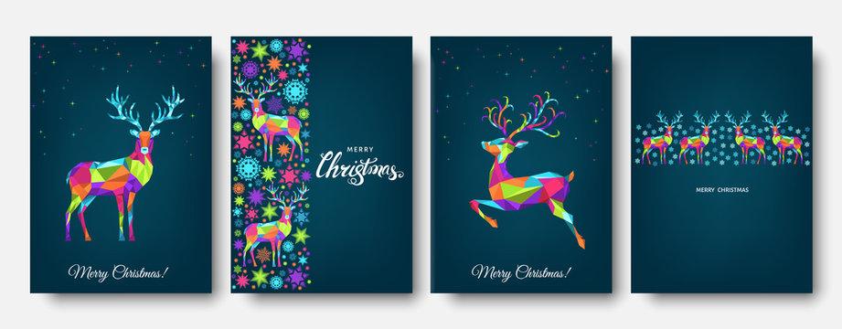 Colorful Christmas  reindeer and  snowflakes.