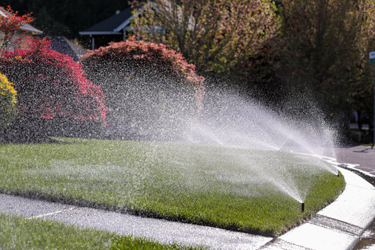 Water sprays from an automatic lawn sprinkler system over green lawn on a sunny day.