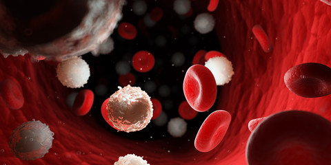 3d rendered medically accurate illustration of too many white blood cells due to leukemia