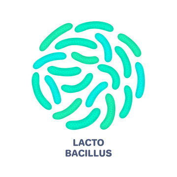 Vector probiotics in circular shape. Lactobacillus. Microbiome. Medicine or dietary supplement. Brochure, flyer, label, cover, poster, banner, package, advertising, presentation. Green colors. Eps10