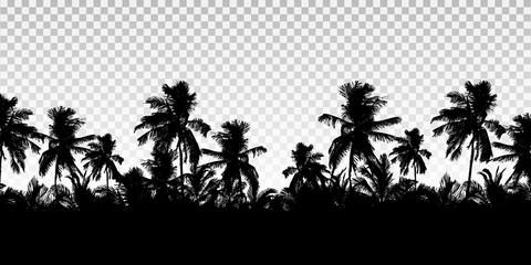 Realistic illustration of a horizon from the tops of palm trees. Black isolated on transparent background with space for your text, vector