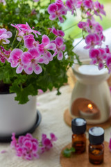 essential oils with rose geranium flower at spa salon