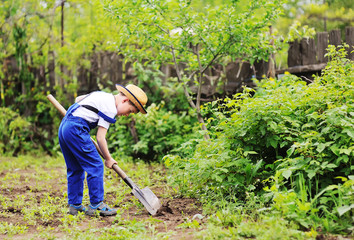 Fototapeta child boy in a straw hat and a blue jumpsuit gardener digs a shovel garden. Space for text, copy space.