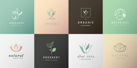 Set of natural and organic logo in modern design. Natural logo for branding, corporate identity, packaging and business card.