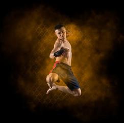 MMA male fighter kick
