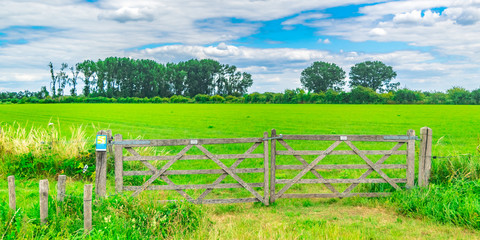 Fence in Dutch polder landscape