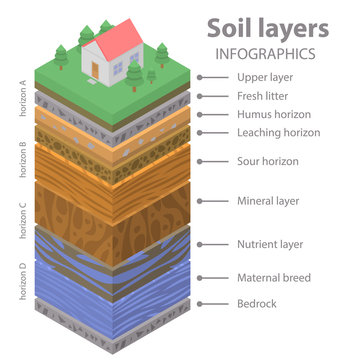Soil ground infographic. Isometric of soil ground vector infographic for web design