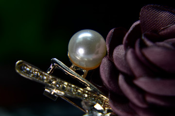 Foto op Canvas Muziek Clasp A rose is a crystal as a jewelry attached to the collar.