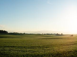 Fields in Skåne, Sweden Fototapete