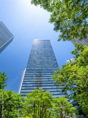 Fototapete 新緑の新宿高層ビル街