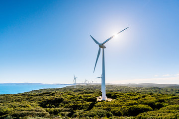 The Albany Wind Farm is one of the most spectacular and largest wind farms in Australia. The boardwalks are ideal for spotting Southern Right and Humpback whales.