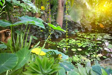 Garden Poster Crocodile versteckte Tiere im Urwald