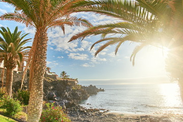 tenerife best beach Playa de la Arena