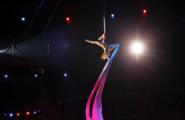 performance of air acrobats in the circus