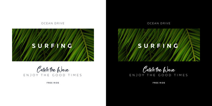 Surfing. Catch the Wave. Palm leaves typography t-shirt print.
