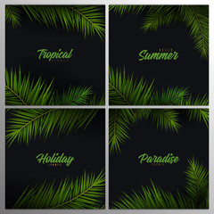 Wall Mural - Set of Summer Tropical palm leaves. Exotic palms tree. Dark Floral Backgrounds.