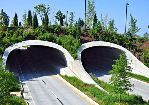 Earthen tunnel for Riverside Drive at The Gathering Place in Tulsa Oklahoma. Morning in the summertime.