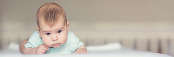 A portrait of a cute newborn baby