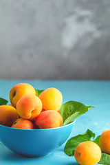 Fresh sweet orange apricots in blue bowl