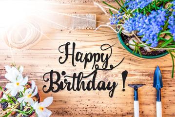 English Calligraphy Happy Birthday. Sunny Spring Flowers Like Grape Hyacinth And Crocus. Gardening Tools Like Rake And Shovel