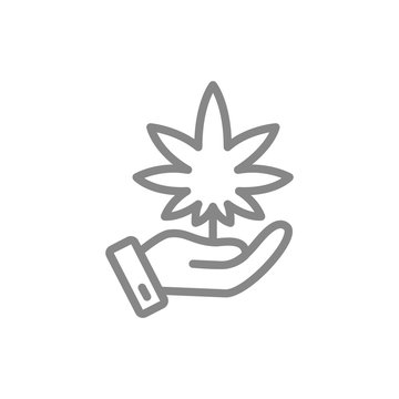 Hand with cannabis leaf, medical care, growing line icon.