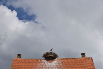 Roof with stork's nest and copy-space in front of a cloud-covered sky.