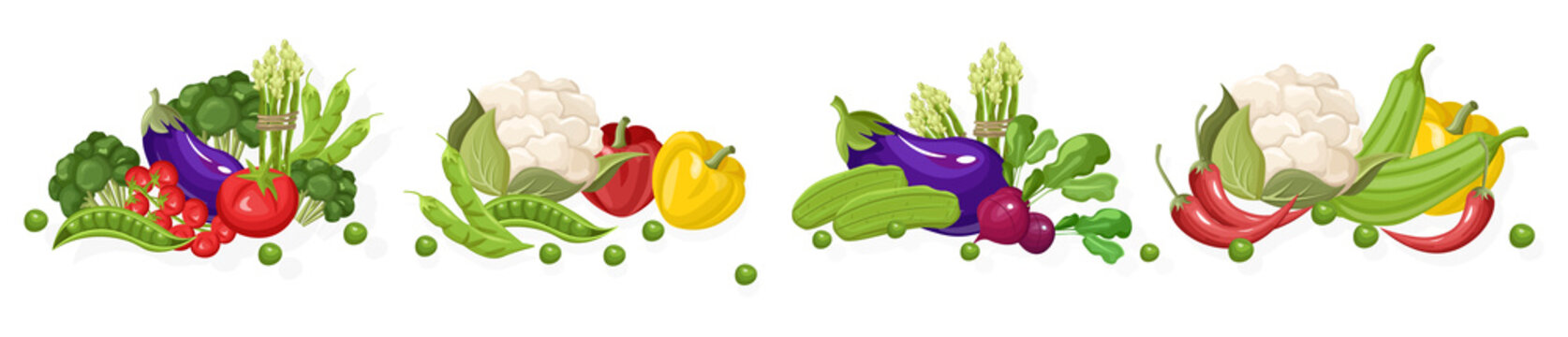 Farm fresh vegetables Vector set. Store shop grocery detailed illustrations posters
