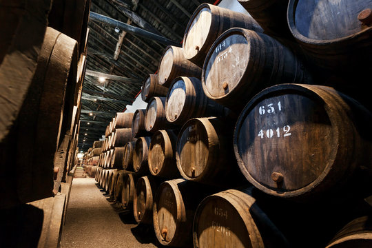 Dark wine cellar with numbered wooden barrels for traditional winemaking