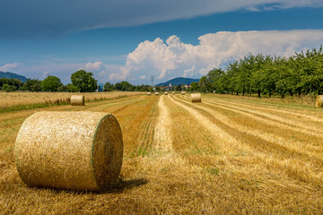 Strohballen auf einem abgemähten Feld