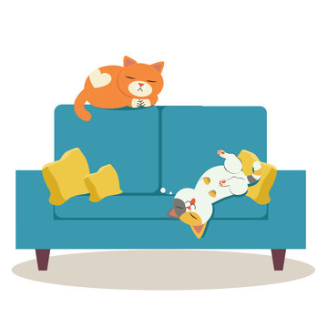 The two character of cat sleeping on the sofa. some cat sleeping on the sofa and they look relaxing. cute cat sleeping on the sofa in flat vector style