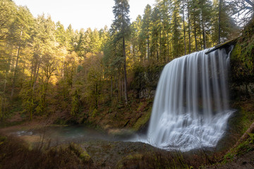 waterfall in forest in Oregon Silver Falls State Part