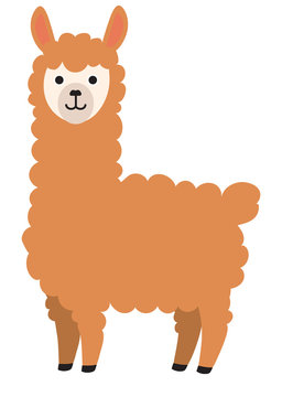 Brown smiling cute lama cartoon flat character design.